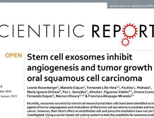 Investigadores de Cells for Cells y Consorcio Regenero publican en Scientifics Reports