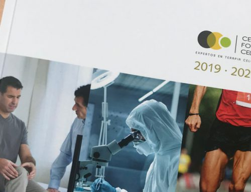 Publicamos nuestra Memoria 2019 – 2020