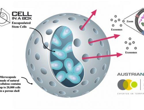Consorcio REGENERO, Cells for Cells y Austrianova anuncian la publicación de un nuevo método para producir exosomas de células mesenquimales
